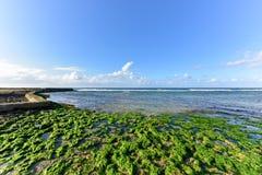 Beach in Alamar - Havana, Cuba Royalty Free Stock Images