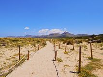Beach of Alcudia Bay on Majorca Stock Images