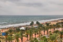 Beach alley with Date Palms in Hammamet, Tunisia, Mediterranean Stock Photo