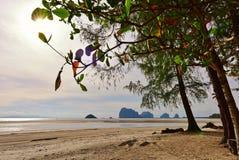 Beach along the Andaman Sea Stock Photography