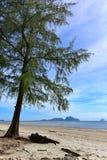 Beach along the Andaman Sea Stock Image