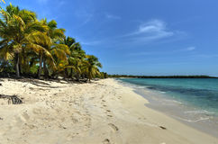 Beach along Isla Catalina, Dominican Republic Stock Photo