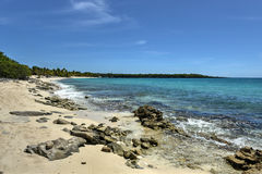 Beach along Isla Catalina, Dominican Republic Stock Photos