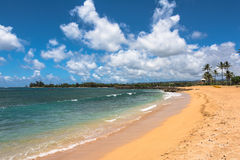 Beach along North Shore coast, Oahu. A view of a beach along North Shore coast in Oahu, Hawaii royalty free stock photo