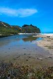 Beach along Pescadero, California Royalty Free Stock Image