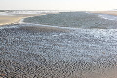 Beach of Ameland Island along North Sea coast, Holland stock photo