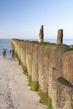 Beach of Amrum Royalty Free Stock Images