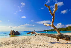 Beach Anse Lazio at island Praslin, Seychelles Royalty Free Stock Images