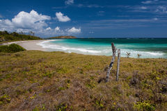 Beach of Anse Trabaud, Martinique Royalty Free Stock Photos