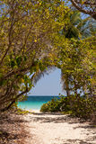 Beach of Anse Trabaud, Martinique Royalty Free Stock Photo