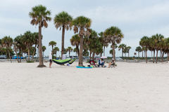 Beach area of Fred Howard Park, Pinellas County, Florida, USA. Pinellas County, FL, USA - July 23, 2017. Beach area of Fred Howard Park Royalty Free Stock Photography
