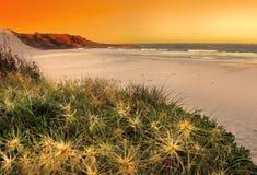 Beach At Sunset Stock Photography