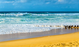 Beach on the Atlantic Ocean near Seignosse - France Royalty Free Stock Images