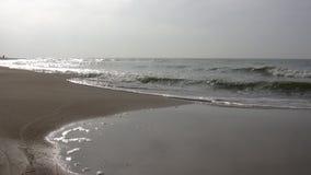 Beach in autumn stock footage