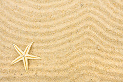 Free Beach Background Stock Images - 12944244