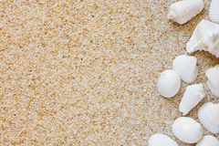 Beach background Royalty Free Stock Image