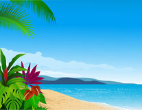 Beach background Royalty Free Stock Photos