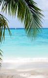 Beach background Stock Image