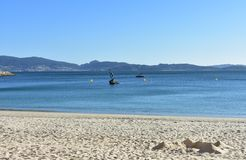 Beach background: Beach in a bay with castle made of sand. Bright sand, clear water, blue sky. Sunny day, Sanxexo, Galicia, Spain. royalty free stock photography