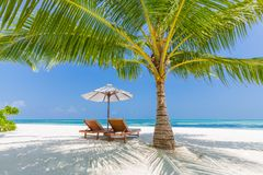 Free Beach Background. Beautiful Beach Landscape. Tropical Nature Scene. Palm Trees And Blue Sky. Summer Holiday And Vacation Concept. Stock Image - 107583021