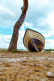 Beach Background.Boat on the beach. Stock Photos