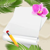 Beach background with leaves of palm and orchid Stock Photos