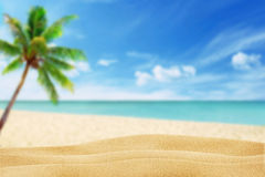 Beach in the background palm and sea. Sand on the beach in the background palm and sea Stock Photo