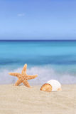 Beach background scene in summer vacation holidays with sea and royalty free stock photo