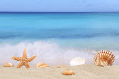 Beach background scene in summer on vacation with sea and copysp Stock Photos