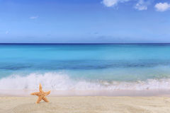 Beach background scene in summer on vacation with sea star and c Royalty Free Stock Image