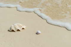 Beach background scenery Royalty Free Stock Photography