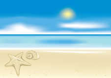 Beach background with a starfish Royalty Free Stock Photography