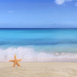 Beach background in summer on vacation with sea star and copyspa Royalty Free Stock Image