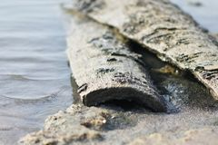 Beach backwater mud, mud background and backdrops. Awesome closeup images on beach backwater Stock Photos