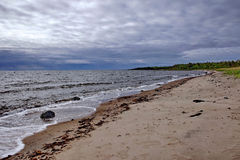 Beach in bad weather. Russia, the Solovetsky Islands, White sea Royalty Free Stock Images