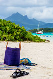 Beach bag and slippers with a tropical landscape Royalty Free Stock Image