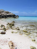 Beach in the Bahamas Stock Image