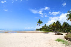 Beach of Bahia Stock Photo