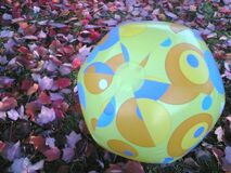 Beach Ball in autumn Red Leaves Royalty Free Stock Images