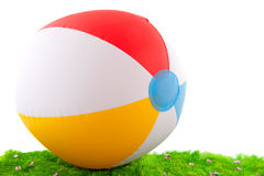 Beach ball in the grass Stock Image