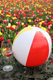Beach ball, wine and flowers. Bright ball, glass of wine and tulips in a meadow royalty free stock photo