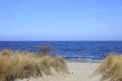 Beach on the Baltic Sea. Way to the beach on the island of Usedom, Baltic Sea, Germany Stock Images