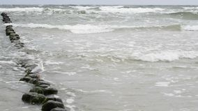 Beach of the Baltic Sea Royalty Free Stock Photo