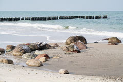 Beach of the Baltic Sea Stock Photography