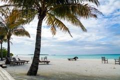Beach-bar and sun bads, Maldives, Ari Atoll. The Maldives in October, indian ocean, Ari Atoll Stock Image