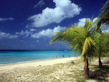 Beach at Barbados Stock Photography