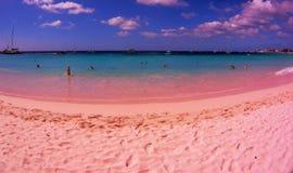 Beach in Barbados stock photo