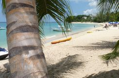 Beach in Barbados, West Indies Royalty Free Stock Photos