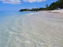 Beach in Barbados, West Indies Stock Image