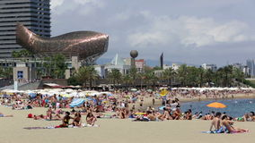 Beach of Barcelona in summer stock video footage